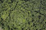 Borneo rainforest -- sabah_aerial_1223