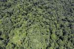 Borneo rainforest -- sabah_aerial_1226