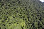 Borneo rainforest -- sabah_aerial_1232