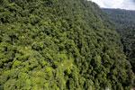 Borneo rainforest -- sabah_aerial_1234