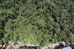 Borneo rainforest river -- sabah_aerial_1239