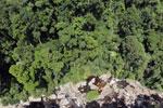 Borneo rainforest river -- sabah_aerial_1240