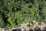 Borneo rainforest river -- sabah_aerial_1241