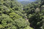 Borneo rainforest -- sabah_aerial_1250
