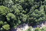 River below Maliau Falls -- sabah_aerial_1425