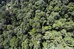 Maliau Basin Conservation Area -- sabah_aerial_1436