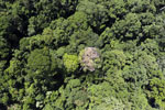Maliau Basin Conservation Area -- sabah_aerial_1437