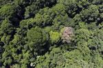 Maliau Basin Conservation Area -- sabah_aerial_1438