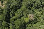 Maliau Basin Conservation Area -- sabah_aerial_1440