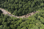 Rainforest river in Borneo -- sabah_aerial_1451