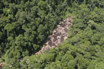 Rainforest river in Borneo -- sabah_aerial_1456