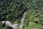 Rainforest river in Borneo -- sabah_aerial_1458