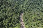 Rainforest river in Borneo -- sabah_aerial_1463
