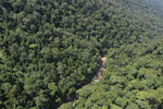 Rainforest river in Borneo -- sabah_aerial_1483