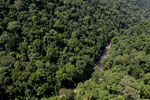 Rainforest river in Borneo -- sabah_aerial_1489