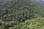 Rainforest river in Borneo -- sabah_aerial_1491