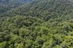 Borneo rainforest -- sabah_aerial_1498