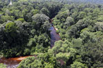 Blackwater river in Borneo -- sabah_aerial_1514