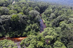 Blackwater river in Borneo -- sabah_aerial_1515