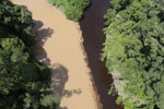 Sedimentation of a river in Borneo due to logging -- sabah_aerial_1520