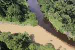 Muddy river and blackwater river converge in Borneo -- sabah_aerial_1528
