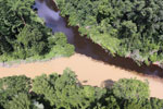Sedimentation of a river in Borneo due to deforestation -- sabah_aerial_1531