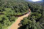 Blackwater river meeting a muddy river in Borneo -- sabah_aerial_1536