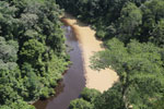 River from healthy forest area meeting river downstream from logging -- sabah_aerial_1542