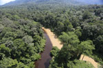 The impact of logging seen on a rainforest river in Borneo -- sabah_aerial_1544