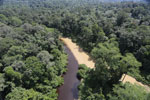Sedimentation of a river in Borneo due to logging -- sabah_aerial_1545