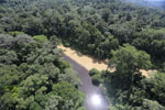 River muddied by upstream deforestation in Borneo -- sabah_aerial_1549