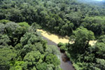 River in Borneo muddied by upstream deforestation -- sabah_aerial_1550