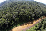 River in Borneo -- sabah_aerial_1553