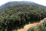 River in Borneo -- sabah_aerial_1554
