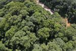Borneo rainforest -- sabah_aerial_1560