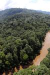River in Borneo -- sabah_aerial_1567