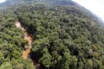 River in Borneo -- sabah_aerial_1571