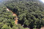 River in Borneo -- sabah_aerial_1572