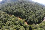 River in Borneo -- sabah_aerial_1575