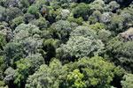 Borneo rainforest -- sabah_aerial_1589