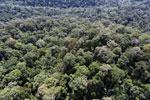 Borneo rainforest -- sabah_aerial_1605