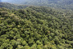 Borneo rainforest -- sabah_aerial_1608