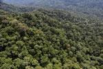 Borneo rainforest -- sabah_aerial_1609