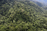 Borneo rainforest -- sabah_aerial_1613