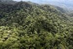 Borneo rainforest -- sabah_aerial_1615