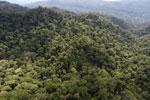 Borneo rainforest -- sabah_aerial_1616