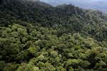 Borneo rainforest -- sabah_aerial_1619