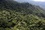 Borneo rainforest -- sabah_aerial_1620