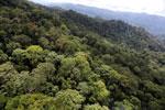 Borneo rainforest -- sabah_aerial_1628