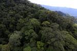 Borneo rainforest -- sabah_aerial_1632